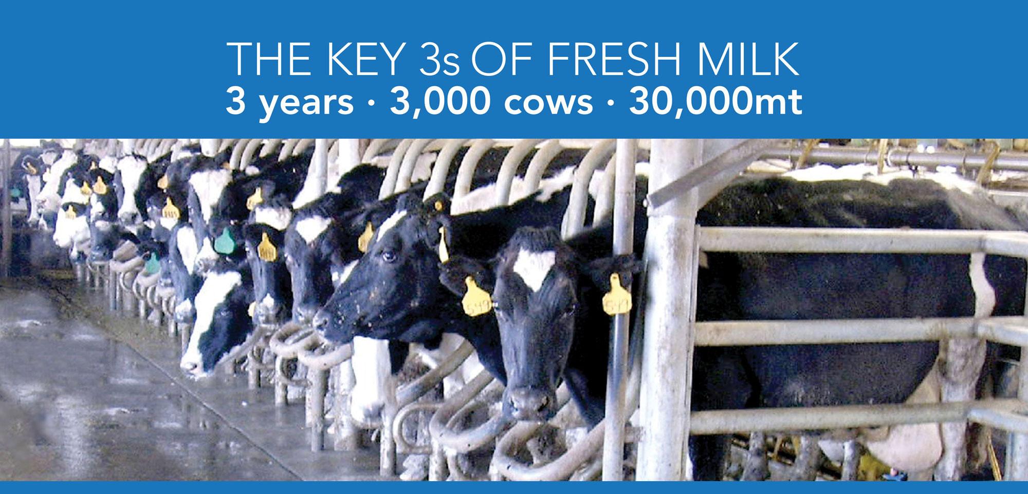 Key 3s of Milk Production image